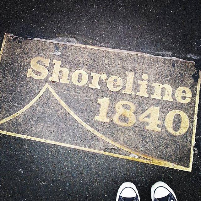 #wellington #nz #WakefieldSt #lookdown #inthepavement #historic #historicwalks #community #heritage #signage #wellingtonnz #WellyNZ #LocalLoveNZ #ShareMeWLG #newzealand #whywellington #converse #Cons #ig_nz #ignz #instagramnz #instagramernz #latergram #nz #wellingtonhistory