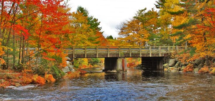 The bridge over Camerons Brook, Route 8 (Kejimkujik Scenic Drive), near Liverpool, Nova Scotia