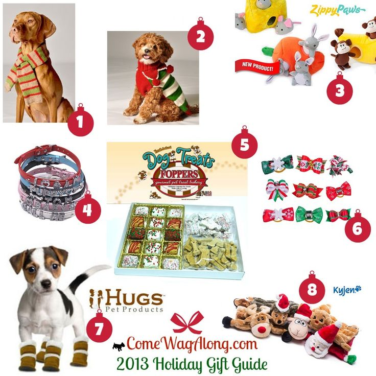 1000 images about dog and dog lovers christmas wish list Unique christmas gifts for couples who have everything