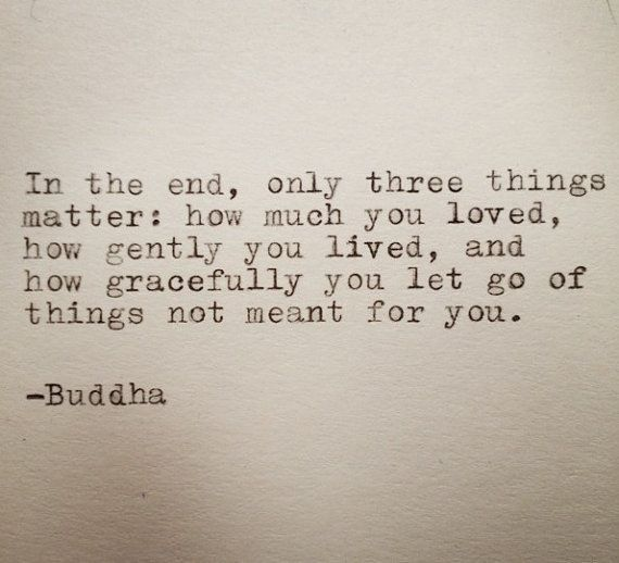 """In the end, only three things matter: how much you loved, how gently you lived, and how gracefully you let go of the things not meant for you."" - Buddha"