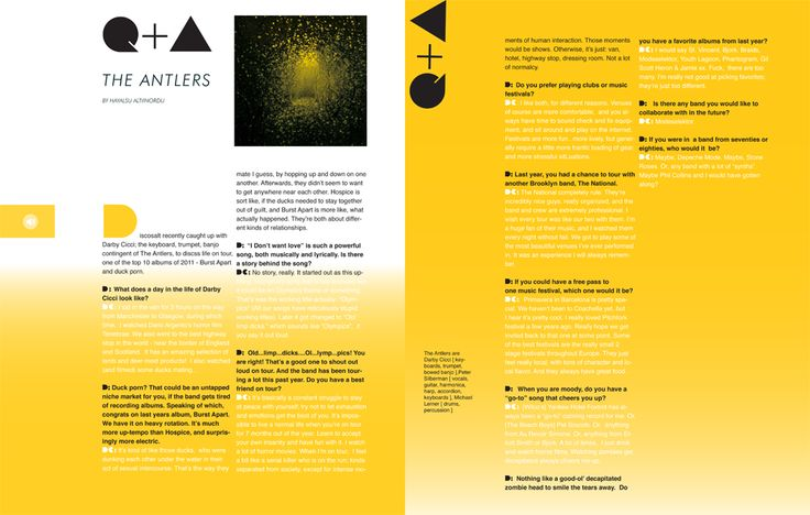 Discosalt Magazine Issue 3 for the iPad- Q + A: The Antlers