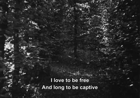 I love to be free  And long to be captive