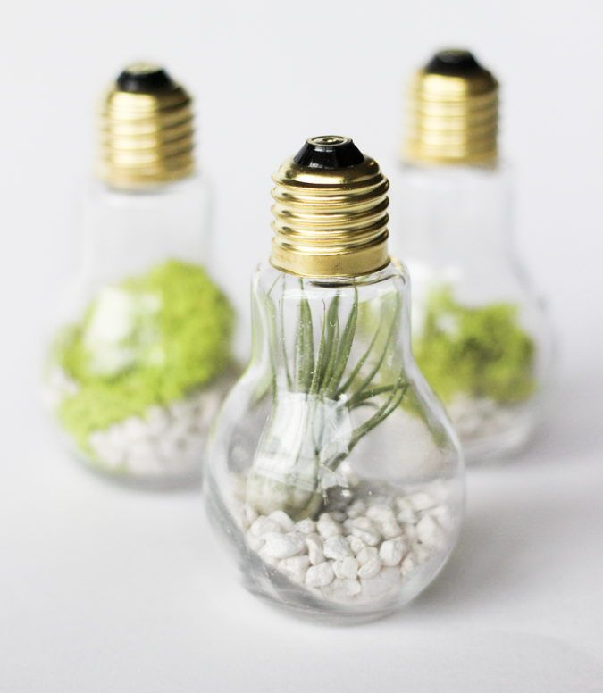 Light Bulb Jar Gifts — Lightbulb Terrariums