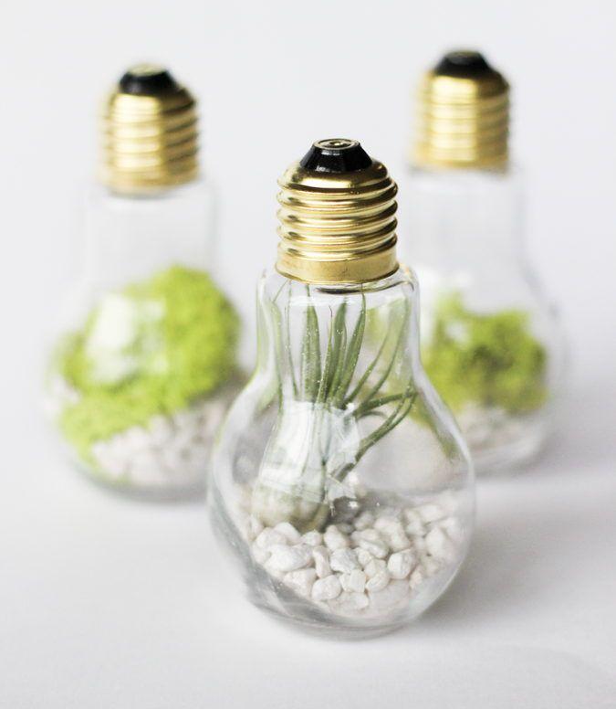 Light Bulb Jar Gifts — Lightbulb Terrariums
