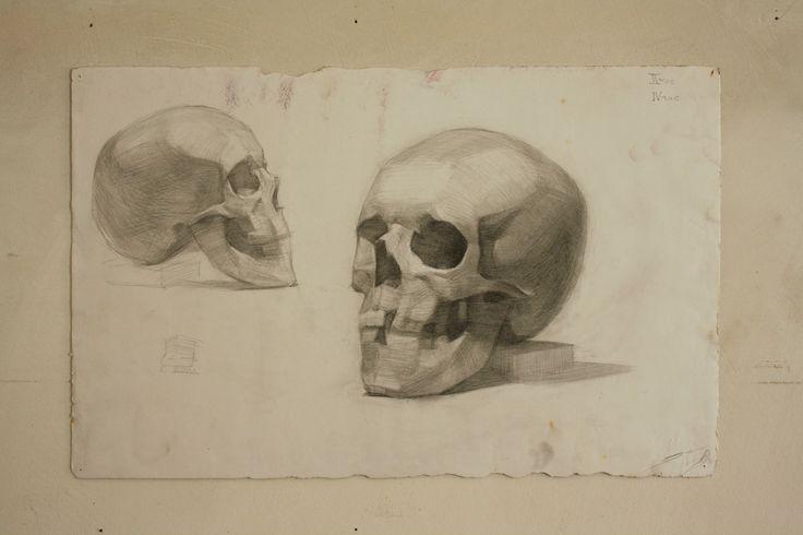 zeichnung skull