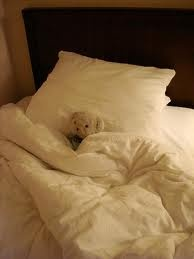 Bed, napping.: Beds Life, Christian, Comfy Beds, Teddy Bears, Beds Sigh, Naps Time, Blankets, Comfy Cozy, Animal