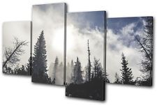 Forest Nature Winter Landscapes MULTI CANVAS WALL ART Picture Print