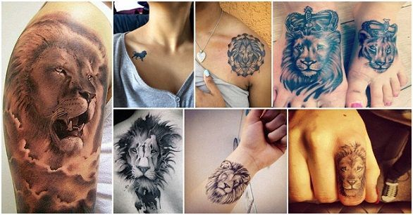 nice Tattoo Trends - 15 Meaningful Lion Tattoo Designs for Men and Women...