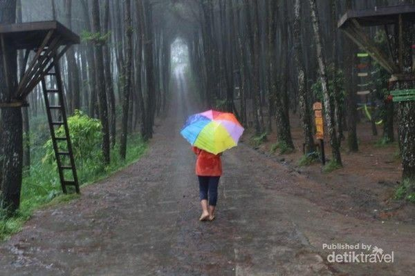 25 Pemandangan Indah Saat Hujan Pemandangan Indah Di Xian Yang Unik Dan Patut Kamu Lawati Tempat Download Tebing Keraton Band Di 2020 Pemandangan Fotografi Gambar