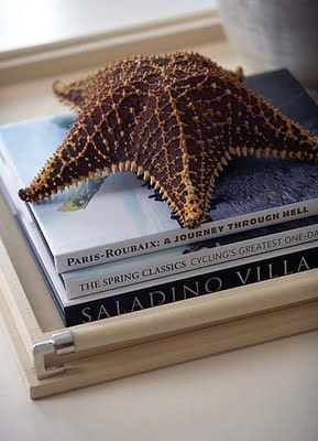 Star Fish resting itself on a pile of books give me double loves. Joyce Poppen