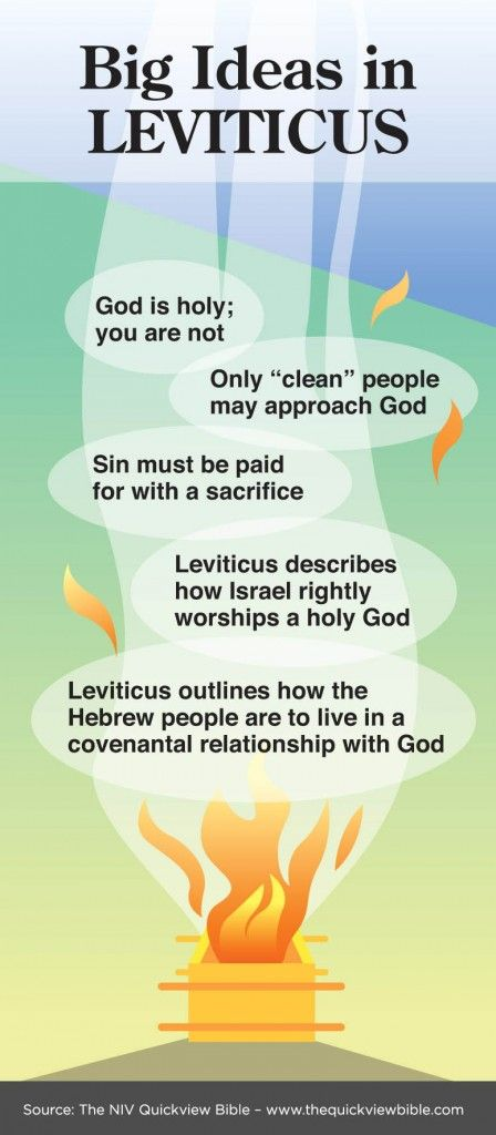 The Quick View Bible » Big Ideas in Leviticus - Interesting to note that everything that happened in Leviticus occurred during one month.