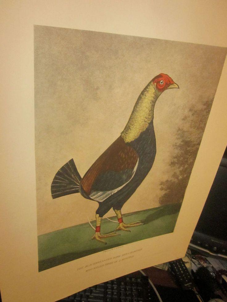 Art fine reproduction vintage