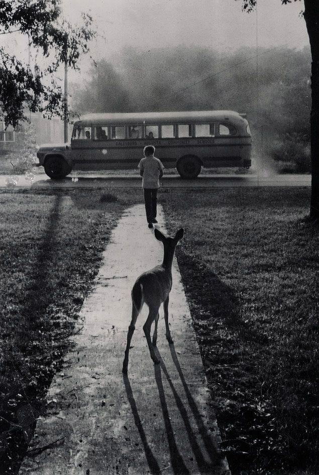School bus 1960