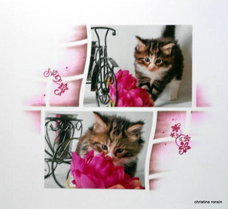 La balade du chat | Azza - Leader du scrapbooking