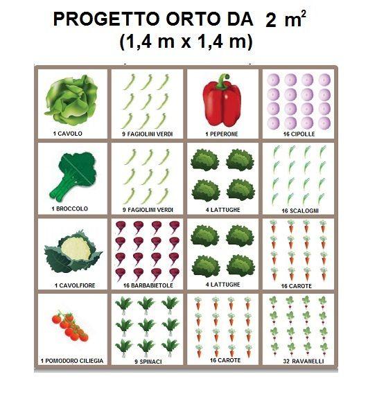 COME INIZIARE A COLTIVARE UN ORTO IN VASO O IN PIENA TERRA - Cucina Green