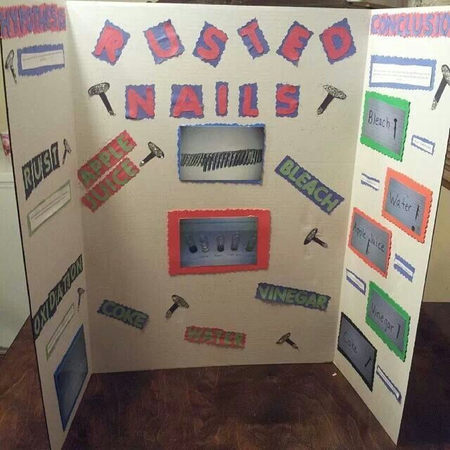 Science fair projects, Fair projects and Science fair on Pinterest