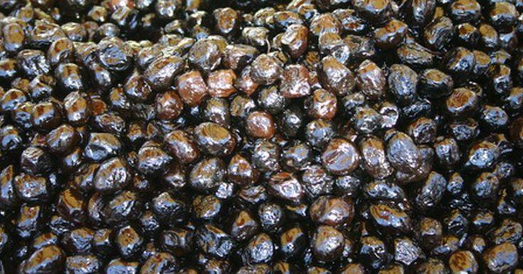 Cómo encurtir aceitunas negras. Hay muchas variedades distintas de aceitunas, pero dentro de esas variedades, las aceitunas verdes no están maduras, mientras que las negras han madurado por completo. Si no están encurtidas o en salmuera estas pueden saber amargas en lugar de picantes y saladas, como lo son las aceitunas verdes, o suaves y con un ligero gusto a nueces, como las ...