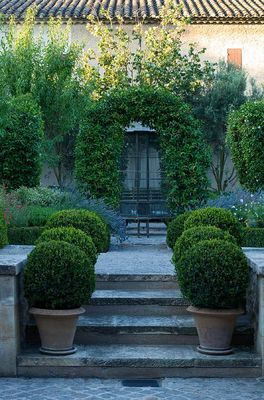 Formal design solution to sloping garden with box in terracotta pots. Design by Michel Semini.