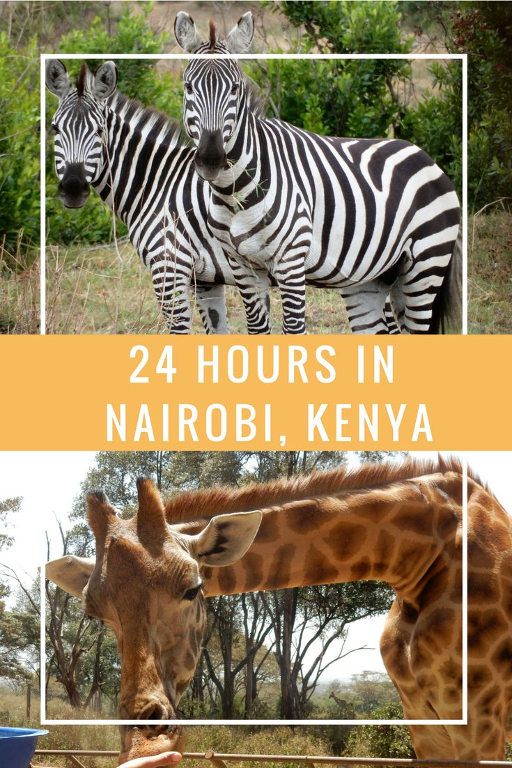 The best way to spend your time in Nairobi #thetinytaster http://thetinytaster.com/2017/05/04/24-hours-in-nairobi-kenya/