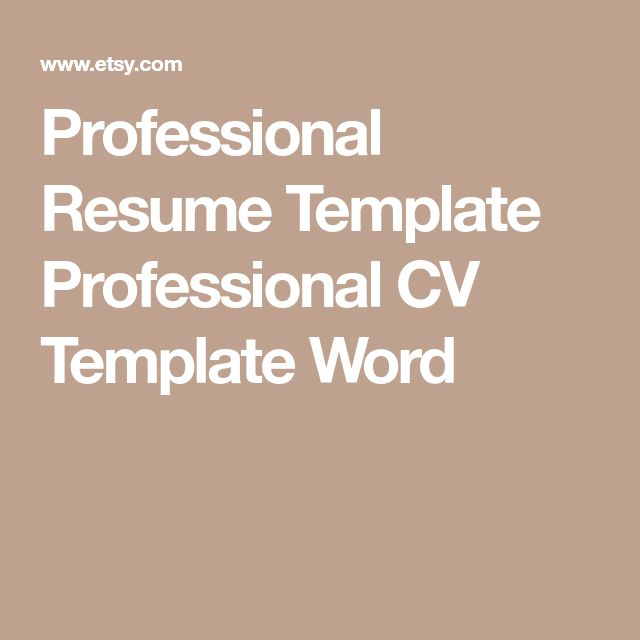 Professional Resume Template Professional CV Template Word