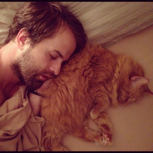 The 30 Cutest Boys with Beards with Cats ... not too many things are as close to perfect as this is!!