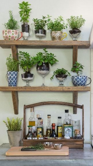 Hortinha #taças #xícaras #cozinha