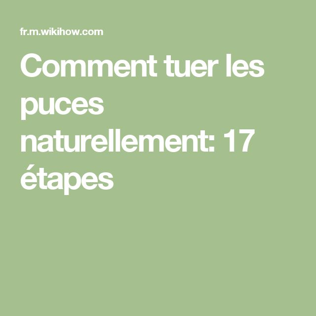best 20 anti puces naturel ideas on pinterest rem des