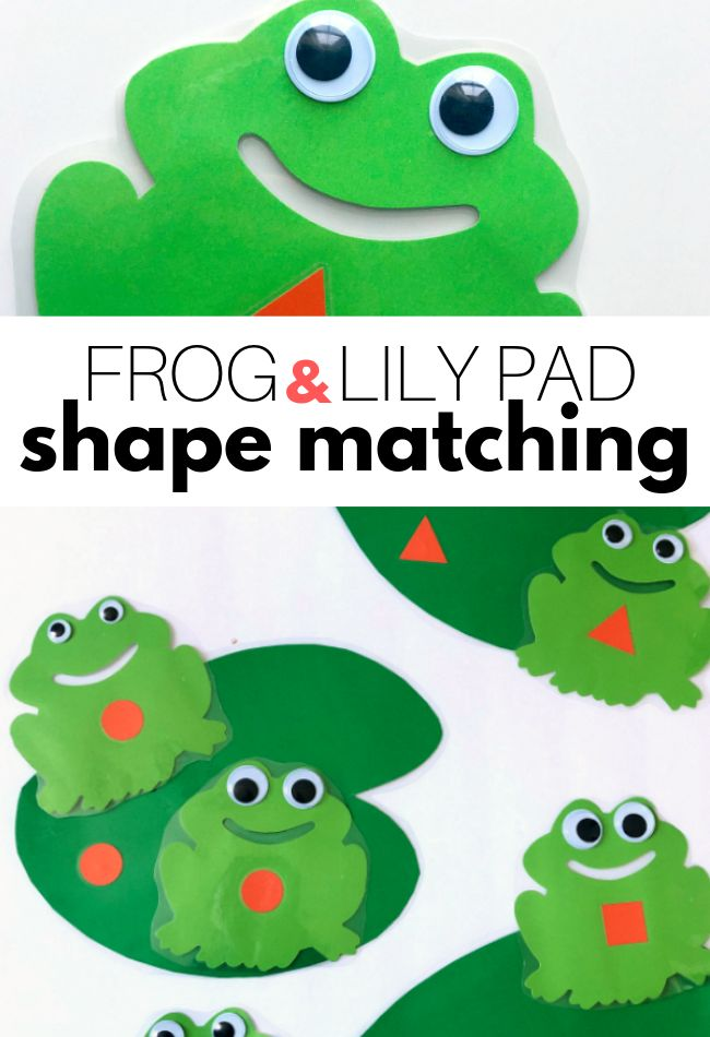 Spider Themed Circle Time Activity With Free Printables: Frog Pond Shape Match Activity For Preschool