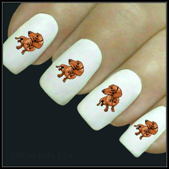 Animal Nail Decal Dachshund Nail Art 20 Water By Decalgirlusa