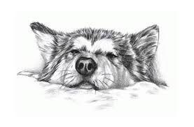 Image result for husky tattoo