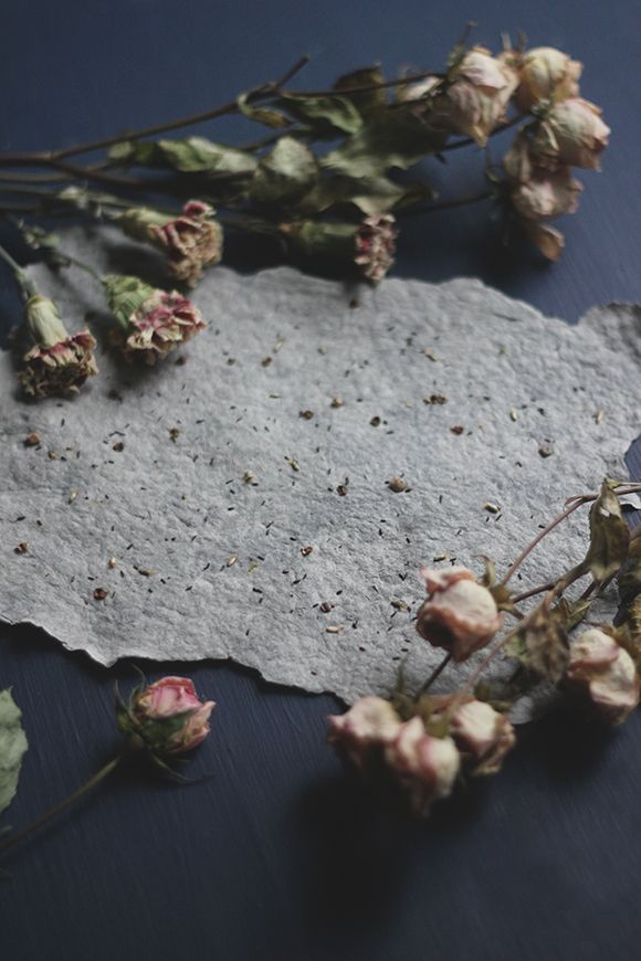 How to Make Plantable Seed Paper | Free People Blog #freepeople