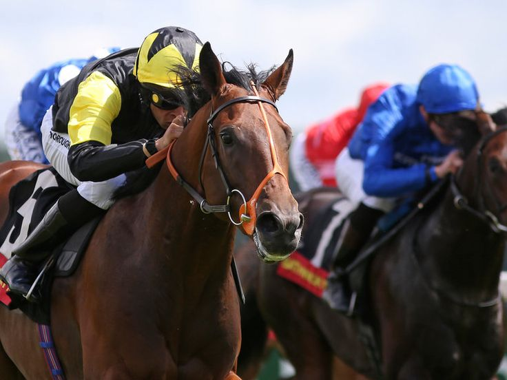 Punters look to Levey at Lingfield  https://www.racingvalue.com/punters-look-to-levey-at-lingfield/