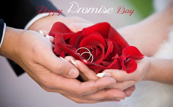 Promise Day is the 4thday of Valentine Week or celebrated on 11th of February every year according Roman calendar. here we have collected some beautiful Happy Promise Day 2016 HD Wallpapers, sendthese wallpapers to your friends and girlfriend and make promise of never let them go, and always to be very loyal toward. These wallpapers …