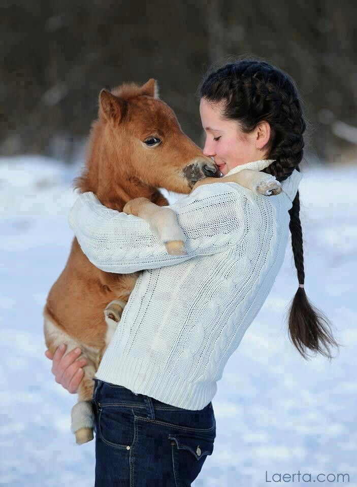 horse cute horses mini pony fluffy miniature ponies tiny holding foal adorable pretty care smart