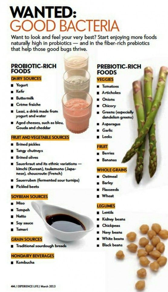 good bacteria // probiotics and prebiotics #healthy