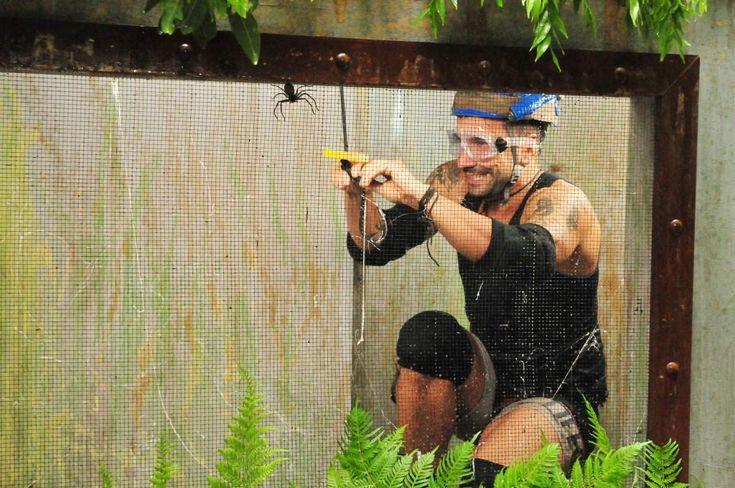 Tag 15 im Dschungelcamp: Marc Terenzi holt alle Sterne – Thomas Häßler ist… #Dschungelcamp_2017 #Entertainment #aktuell #Anruf #anrufen