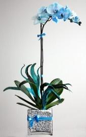 BLUE!: Blue Flower, Gorgeous Centerpieces, Center Piece