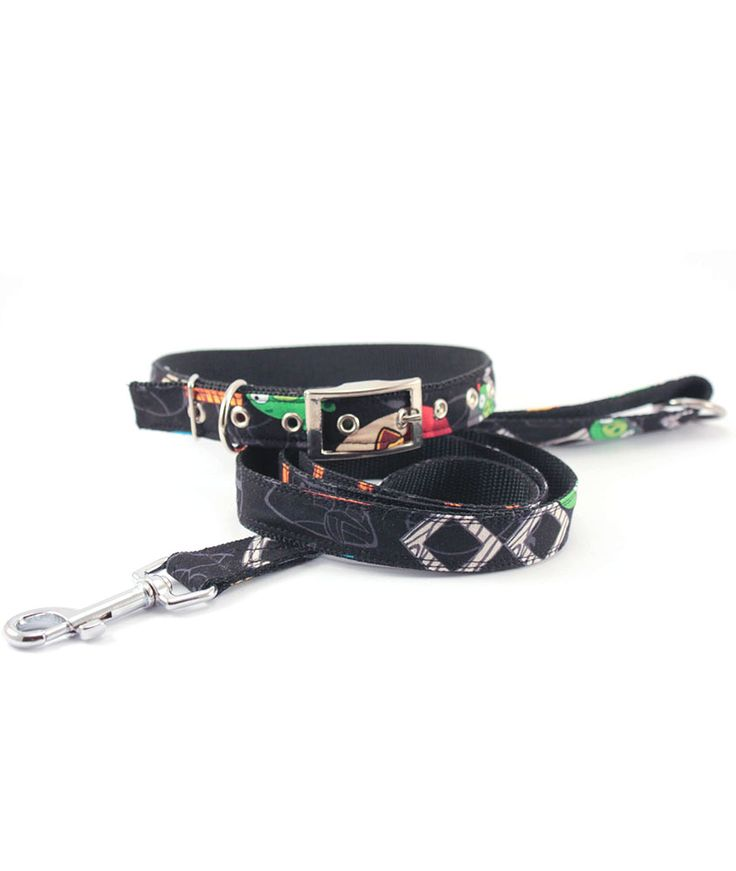 Collar with Simple leash