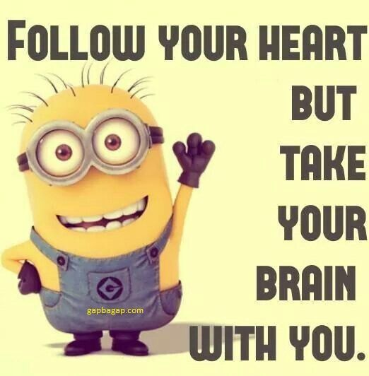 Funny Minion Quote About Hearts vs. Heads