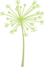 Dandilion stamp for curtains