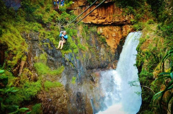 Full-Day Zip-Line, Cheetahs and Wine Adventure Tour from Cape Town