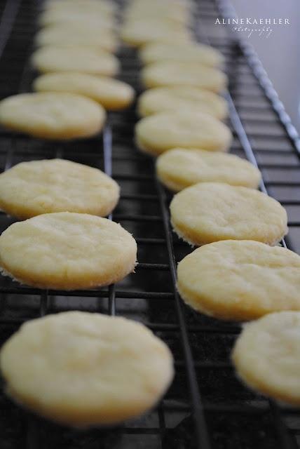 recipe: sugar free sugar cookies with stevia [30]