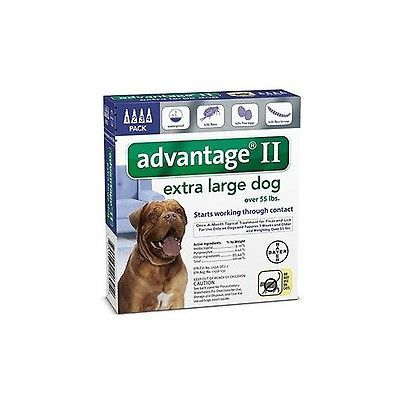 Flea and Tick Remedies 20749: Bayer Advantage Ii Flea And Tick Treatment For Dogs Over 55-Pound, 4 Month Supply -> BUY IT NOW ONLY: $32.42 on eBay!