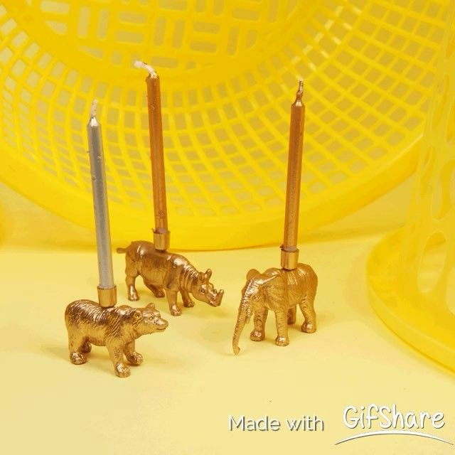we have a few of these babies left that can be yours! buy now before its to late! #candles #birthday #animal #safari #online #bbc1 #poundshopwars