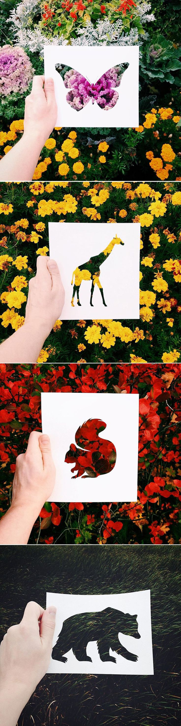 Artist Uses Nature To Color Animal Paper Silhouettes