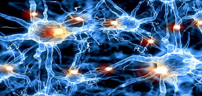 Image result for neurochemical changes