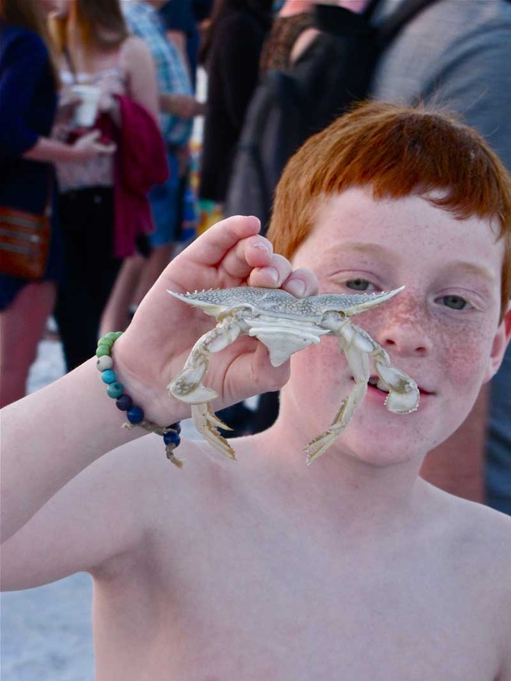 This little guy was more interested in the crab he found than the drum circle. Of course!
