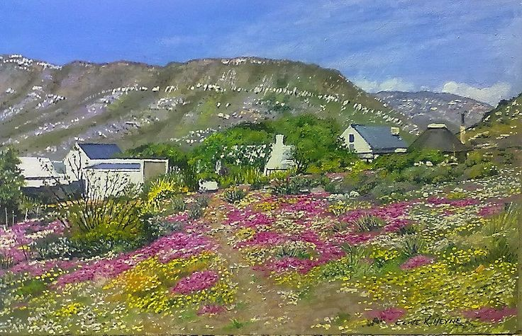 KAROO FLOWERS IN PRINCE ALBERT 400 X 600 mm ( 16 x 24 inches) unframed -