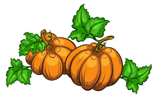 Transparent Pumpkins PNG Clipart Picture