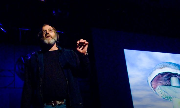 Mycologist Paul Stamets lists 6 ways the mycelium fungus can help save the universe: cleaning polluted soil, making insecticides, treating smallpox and even flu viruses.
